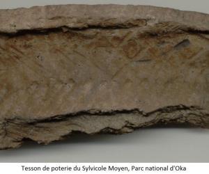 Les découvertes archéologiques près de la plage du parc national d'Oka